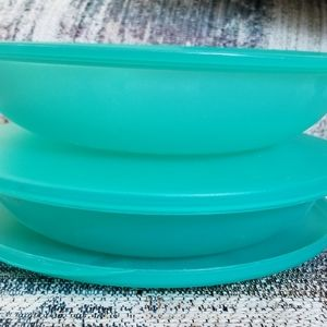 Tupperware Covered Dishes